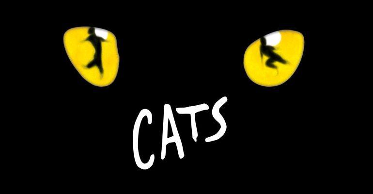 cats-770x400